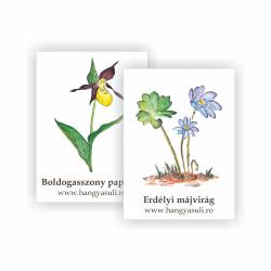 Virágok - öntapadós (13.2.)